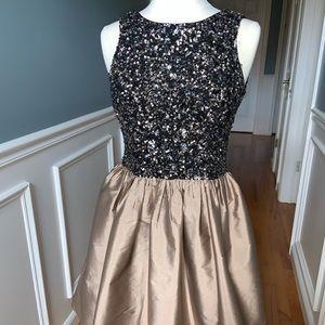 Adrianna Papell Sequins Dress